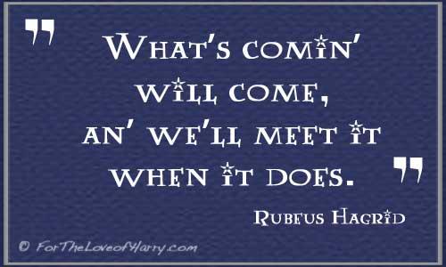 Hagrid Quote