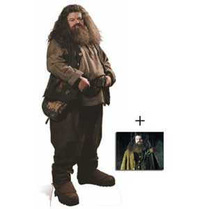 Rubeus Hagrid Costume