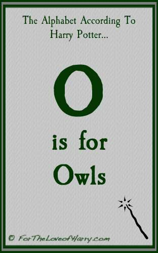 O is for Owls