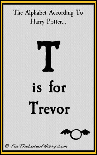 T is for Trevor