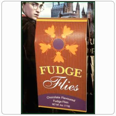 Fudge Flies