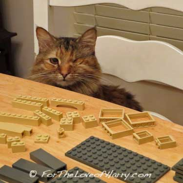 Lily and LEGO® Bricks