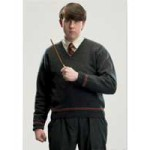 Neville Longbottom Costume