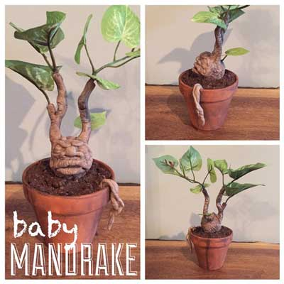 Potted mandrake root inspired by the Harry Potter films