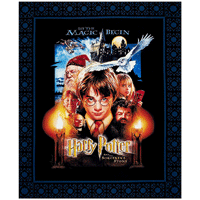 Harry Potter inspired fabric that you can use for sewing and crafting